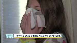 How to ease spring allergy symptoms [Video]