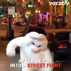 Easter Bunny Gets into a Street Fight to a Defend Woman [Video]