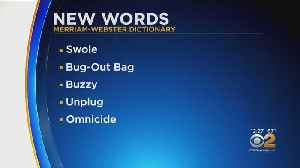 New Words Added To Dictionary [Video]