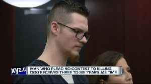 Man who plead no contest to killing dog receives 3 to 6 years jailtime [Video]