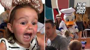 Toddler's reaction to seeing Donald Duck is magical [Video]