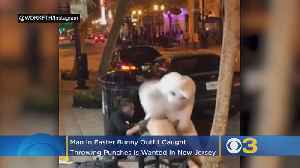 Man In Easter Bunny Suit Involved In Fight Wanted In New Jersey For Car Burglaries [Video]