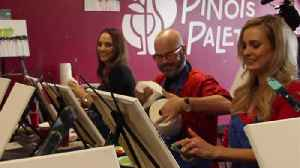 Painting fun with Pinot's Palette [Video]
