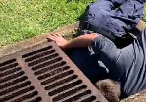 Florida Firefighters Coax Ducklings Out of Storm Drain With Video of Mother Duck [Video]