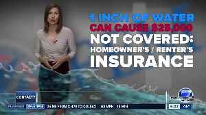 What You Need to Know About Flood Insurance [Video]
