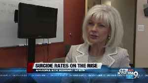 Arizona mental health expert: Suicide rates have 'sky-rocketed' [Video]