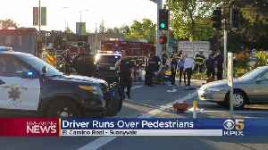Police: Driver May Have Intentionally Sped Into 8 Sunnyvale Pedestrians [Video]