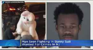 Man Involved In Bunny Brawl Wanted In N.J. [Video]