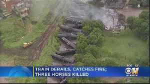 Train Derails, Catches Fire In South Fort Worth; Barn Burns Down, Killing 3 Horses [Video]