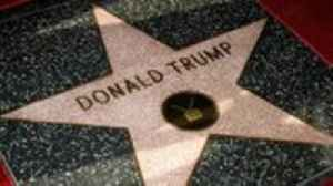 LAPD Investigating After New Graffiti Appears on Trump's Hollywood Star | THR News [Video]
