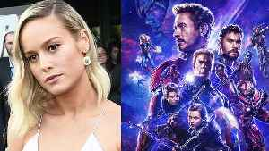 Avengers Endgame Cast Hate Brie Larson & Don Cheadle Reacts To This Crazy Rumor [Video]