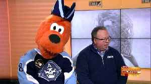 It's Playoff Time for Our Admirals! [Video]
