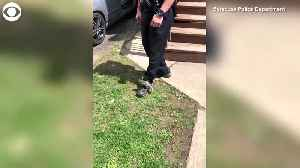 WEB EXTRA: Squirrel Holds Onto Officer [Video]