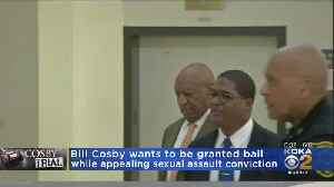 Bill Cosby Wants To Be Granted Bail While Appealing Sex Assault Conviction [Video]