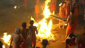 No comment of the week: India firefighting festival, coal-carrying championship, Emperor penguins [Video]