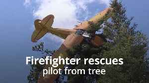 Volunteer firefighter rescues pilot from tree [Video]