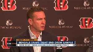 Bengals coordinators explain Rounds 2-3 draft picks [Video]