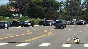 News video: Audio: CHP takes suspected Poway synagogue shooter into custody
