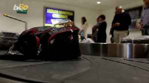 Emotional Baggage! Why Airlines are Losing Fewer Bags These Days [Video]