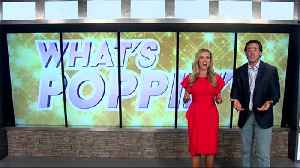 Movies take over today's What's Poppin' [Video]
