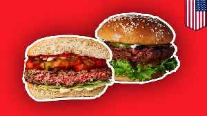 Burger King to roll-out meatless burger nationwide [Video]