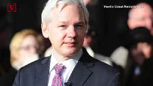WikiLeaks' Julian Assange Sentenced to 50 Weeks in Prison and Still Faces U.S. Charges [Video]
