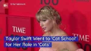 Why Taylor Swift Went To Cat School [Video]
