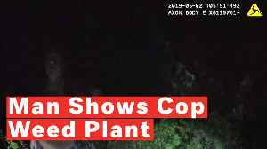 Florida Man Shows Off His Marijuana Plant To Police, Offers Them A Smoke, Gets Arrested [Video]