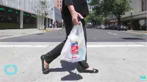 Plastic bags could be banned in Cuyahoga County by October [Video]
