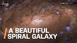 Check Out This Amazing Image Hubble Captured of a Spiral Galaxy [Video]