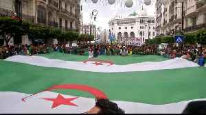 'You must go' Algerians tell leaders at mass demonstration- [Video]