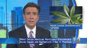 Delaware County's First Medical Marijuana Dispensary Now Open In Morton [Video]