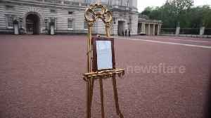 News video: 'It's exciting!' Tourists queue outside Buckingham Palace to glimpse royal baby easel