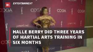 Halle Berry Went All In On Martial Arts Training [Video]