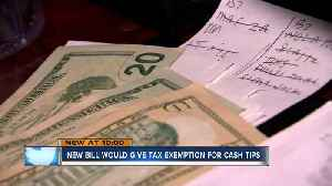 Lawmakers propose making cash tips tax free [Video]
