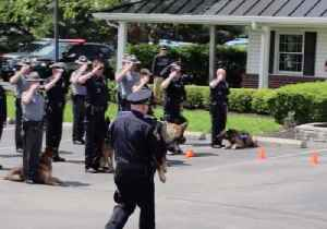 Richwood K-9 Saluted by Fellow Officers During His 'Final Walk' [Video]