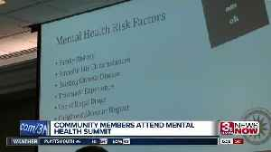 Community members attend mental health summit [Video]