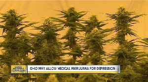 Ohio considering allowing medical marijuana for depression, 4 other conditions [Video]