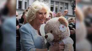 Duchess of Cornwall given teddy for baby royal on Germany tour [Video]
