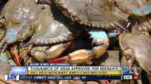 Hogan praises approval of visas to support crab industry [Video]
