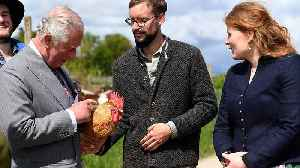 Prince Charles and Camilla visit organic farm during Germany visit [Video]