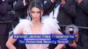 Is Kendall Jenner Inspired By Her Entrepreneur Sister [Video]