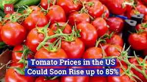 The Cost Of Tomatoes Are Going Up [Video]