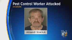 Castle Shannon Man Charged With Attacking Terminix Employee, Police Officers [Video]