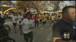 12th Annual Home-Walk Nears -- Event Benefits The Homeless [Video]