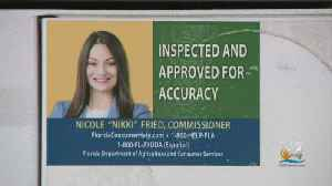 Some Accusing Commissioner Of Agriculture Nikki Fried Of Using Gas Pump Seal As Campaign Ad [Video]