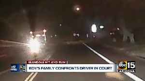 Family of hit-and-run victim confronts driver in court [Video]