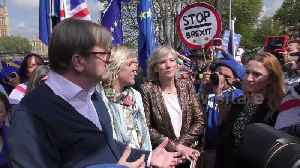 MEP Guy Verhofstadt joins anti-Brexit supporters in London [Video]