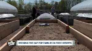'Micro-farm' to bring fresh produce to food deserts in Mansfield area [Video]