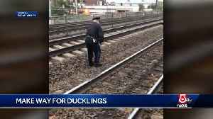 Police officer rescues duckling from train tracks [Video]